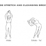 Yoga for Pregnancy 1